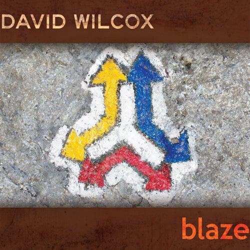 Blaze de David Wilcox