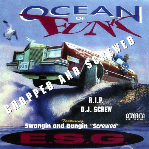 Ocean of Funk de E.S.G.