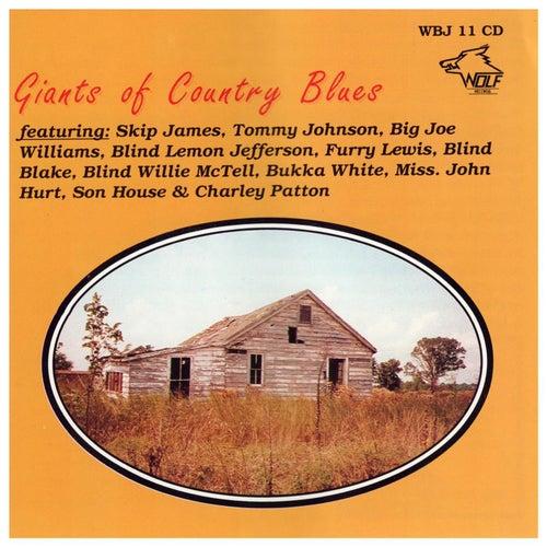 Giants of Country Blues Guitar, Vol. 1 de Various Artists