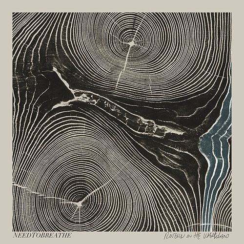 Rivers In The Wasteland von Needtobreathe