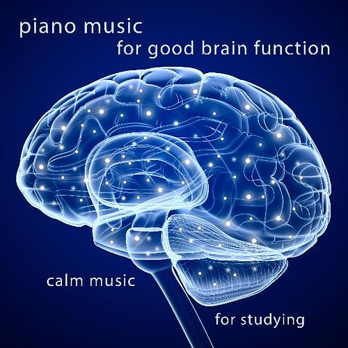 Piano Music for Good Brain Function by Calm Music for Studying