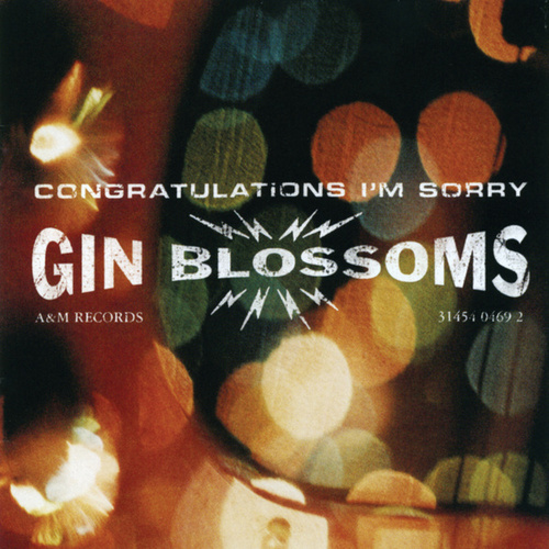 Congratulations I'm Sorry by Gin Blossoms