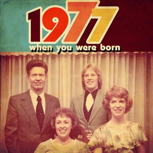 When You Were Born 1977 de Various Artists