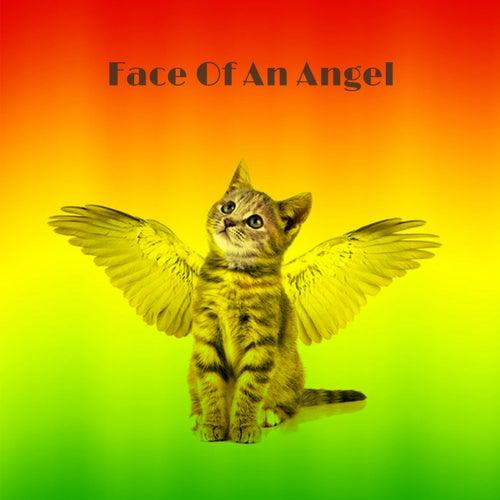 Face Of An Angel van Various Artists
