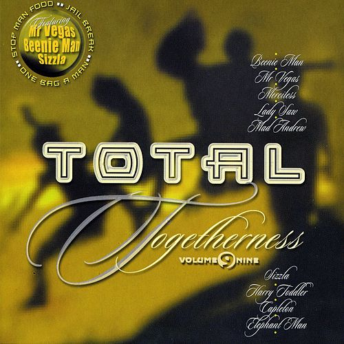 Total Togetherness Vol. 9 by Various Artists