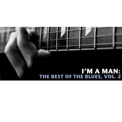I'm a Man: The Best of the Blues, Vol. 2 de Various Artists