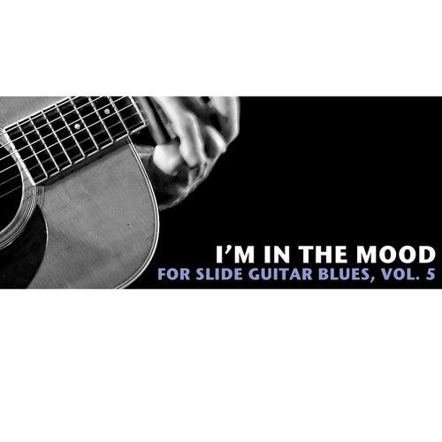 I'm in the Mood Slide Guitar Blues, Vol. 5 de Various Artists