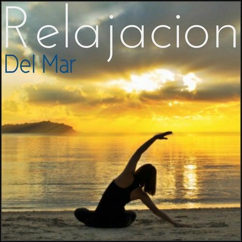 Musica Acustica y Clasica de Relajacion Del Mar
