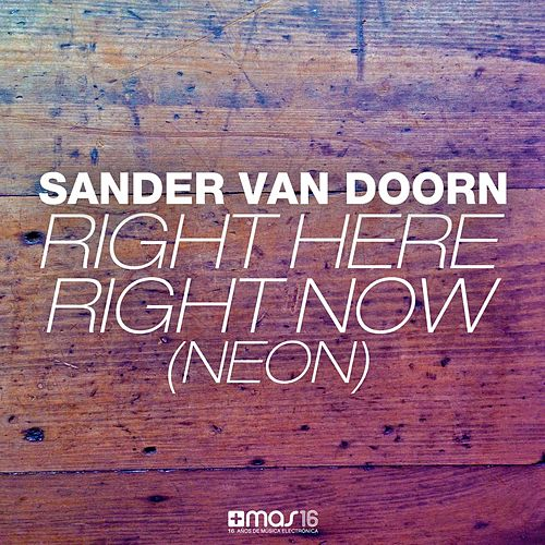 Right Here Right Now (Neon) de Sander Van Doorn