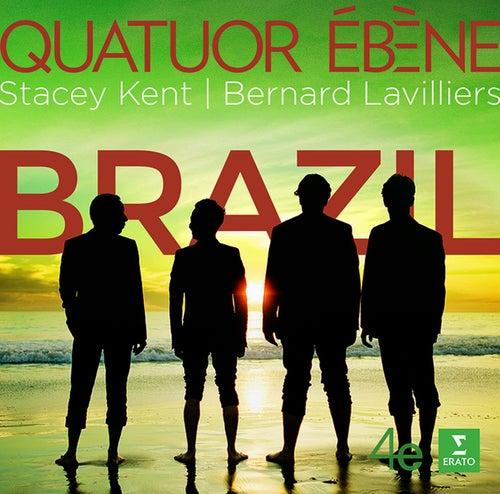 Brazil von Antônio Carlos Jobim (Tom Jobim)
