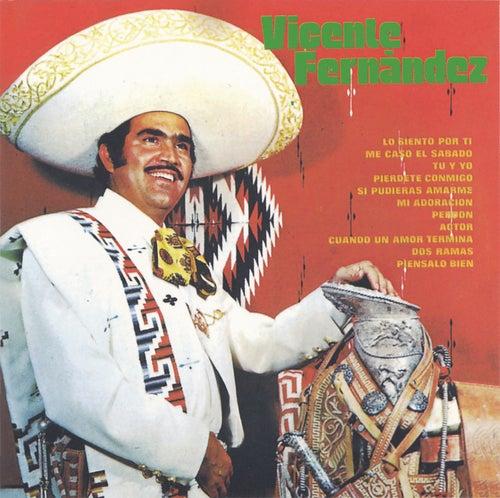 Vicente Fernandez (2nd Album) van Vicente Fernández