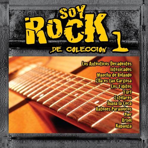Soy Rock de Colección Vol.1 de Various Artists