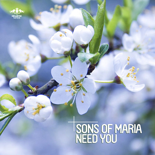 Need You von Sons of Maria