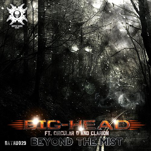 Beyond The Mist - Single by Big Head