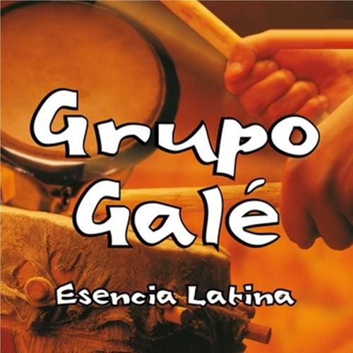 Esencia Latina von Grupo Gale