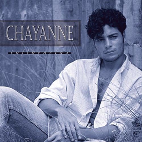 Influencias de Chayanne