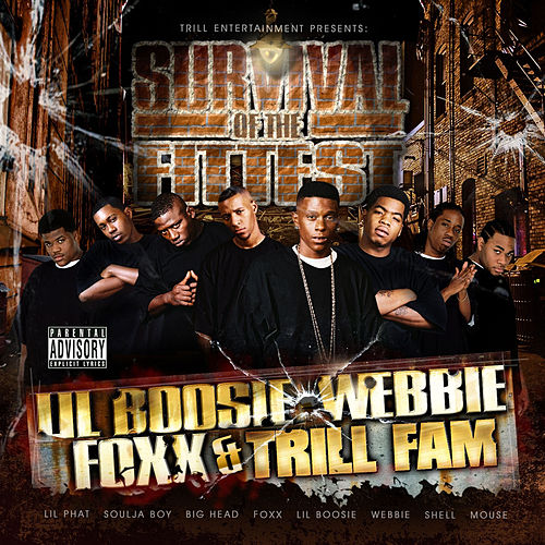 Survival Of The Fittest by Boosie Badazz