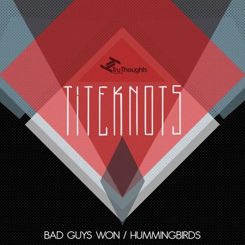 Bad Guys Won / Hummingbirds by Titeknots