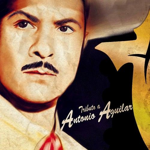 Tributo a Antonio Aguilar by Banda Cruz de Oro