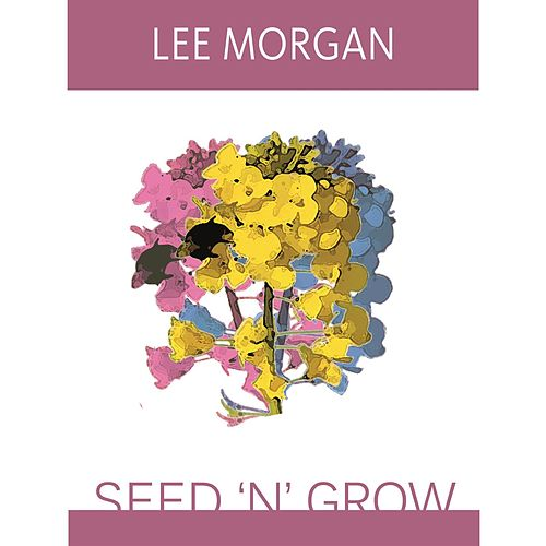 Seed 'N' Grow by Lee Morgan