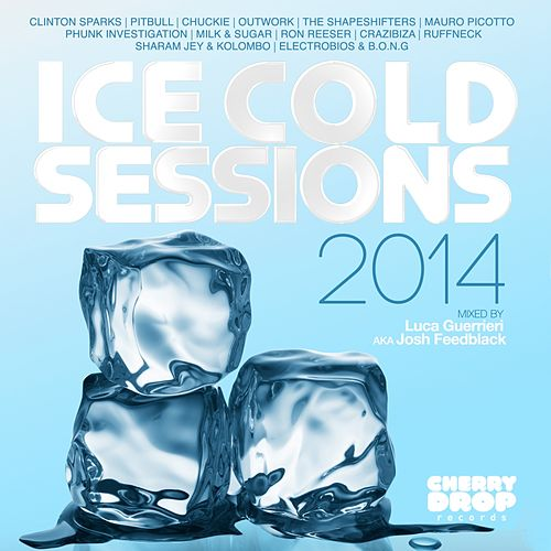 Ice Cold Sessions 2014 Mixed By Luca Guerrieri aka Josh Feedblack - EP von Various Artists