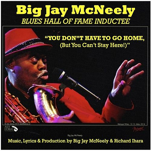 You Don't Have to Go Home, (But You Can't Stay Here) de Big Jay McNeely