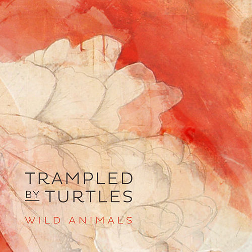 Wild Animals de Trampled by Turtles