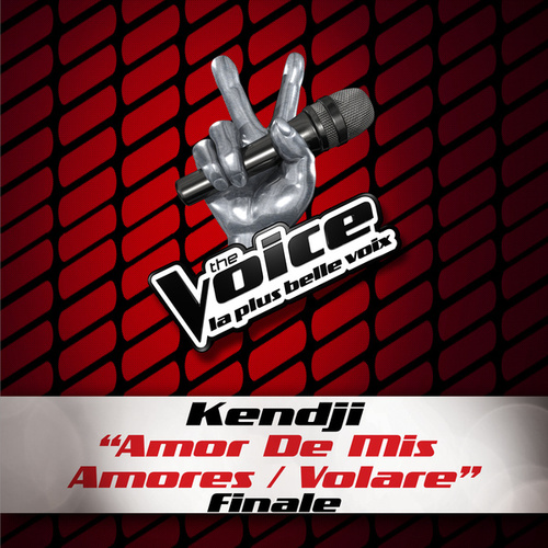 Amor De Mis Amores / Volare - The Voice 3 by Kendji Girac