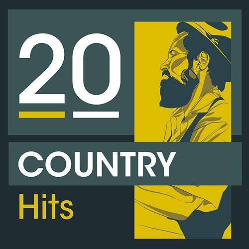20 Country Hits by Various Artists
