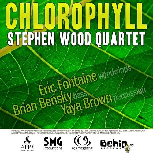 Chlorophyll by Stephen Wood Quartet
