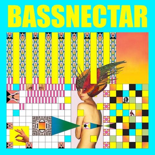 Noise vs Beauty by Bassnectar