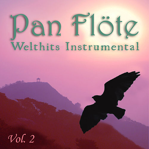 Welthits Instrumental, Vol. 2 by Pan Flöte