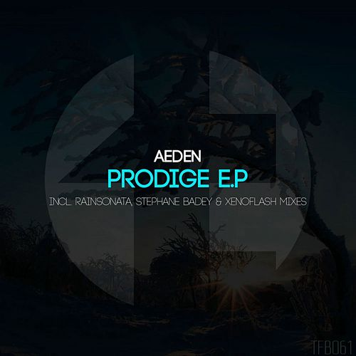Prodige - Single by Aeden