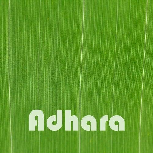 Adhara fra Heaven is Shining