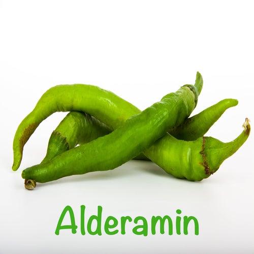 Alderamin by Heaven is Shining