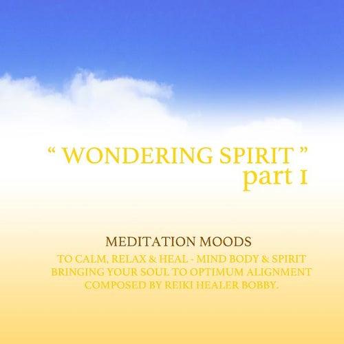 Wondering Spirit, Pt. 1 by Bobby