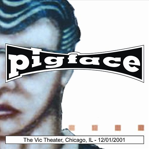 The Vic Theater, Chicago, IL 12/01/2001 by Various Artists