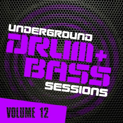 Underground Drum & Bass Sessions Vol. 12 - EP de Various Artists