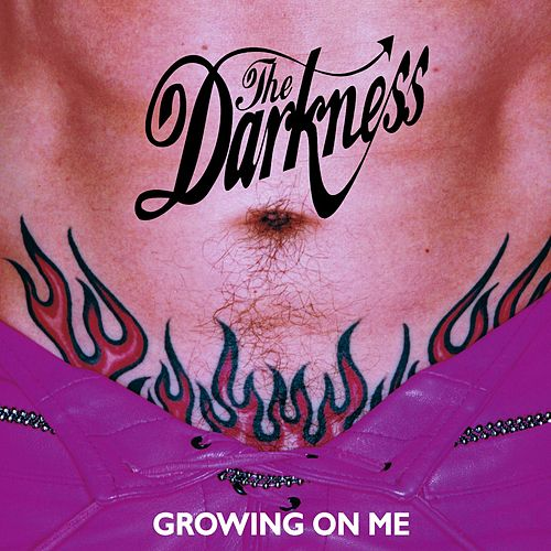 Growing On Me (DUSTY010CD) by The Darkness