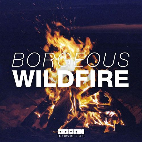 Wildfire von Borgeous