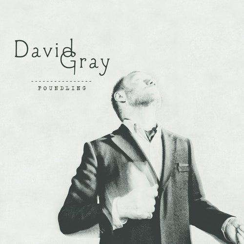 Foundling by David Gray