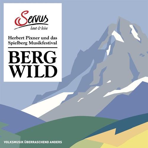 Bergwild - Herbert Pixner und das Spielberg Musikfestival von Various Artists