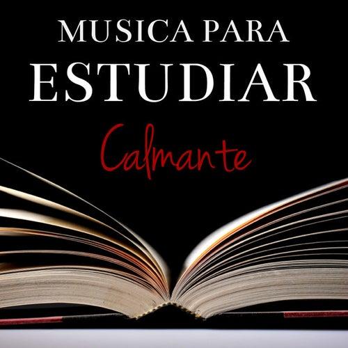 Musica Para Estudiar Calmante de Various Artists