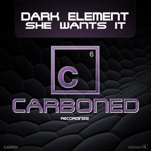 She Wants It de Dark Element