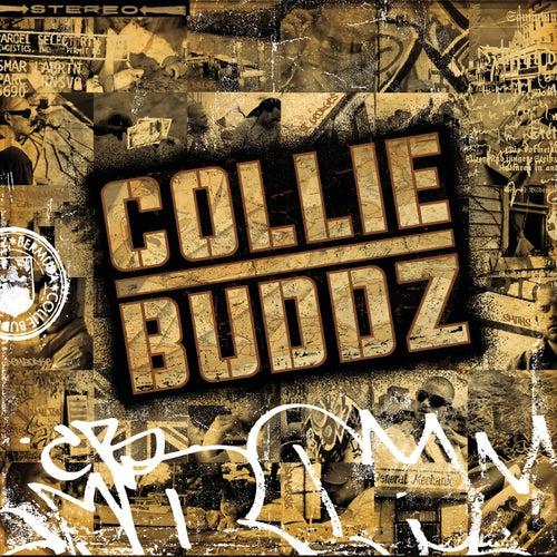 Collie Buddz de Collie Buddz