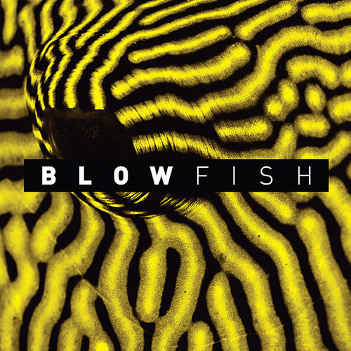 Blowfish by Chimpo