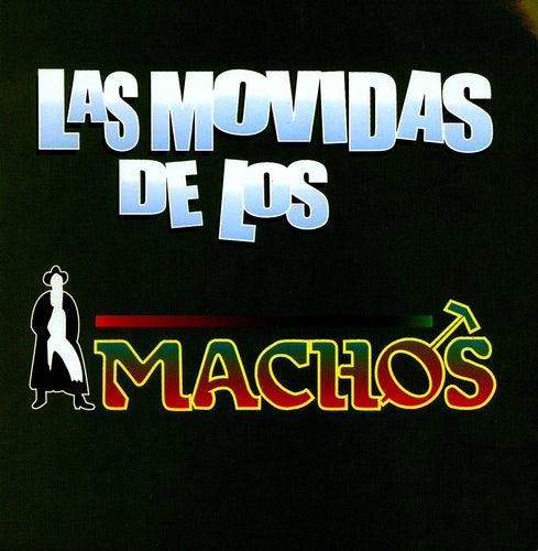 Las Movidas De Los Machos de Banda Machos