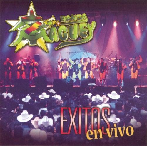 Exitos En Vivo de Banda Maguey