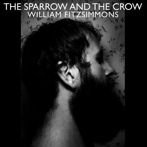 The Sparrow and the Crow von William Fitzsimmons