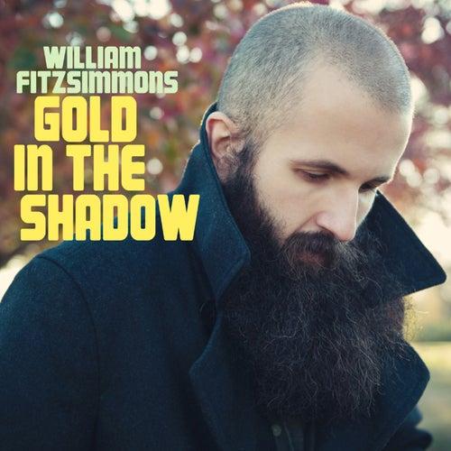 Gold in the Shadow von William Fitzsimmons